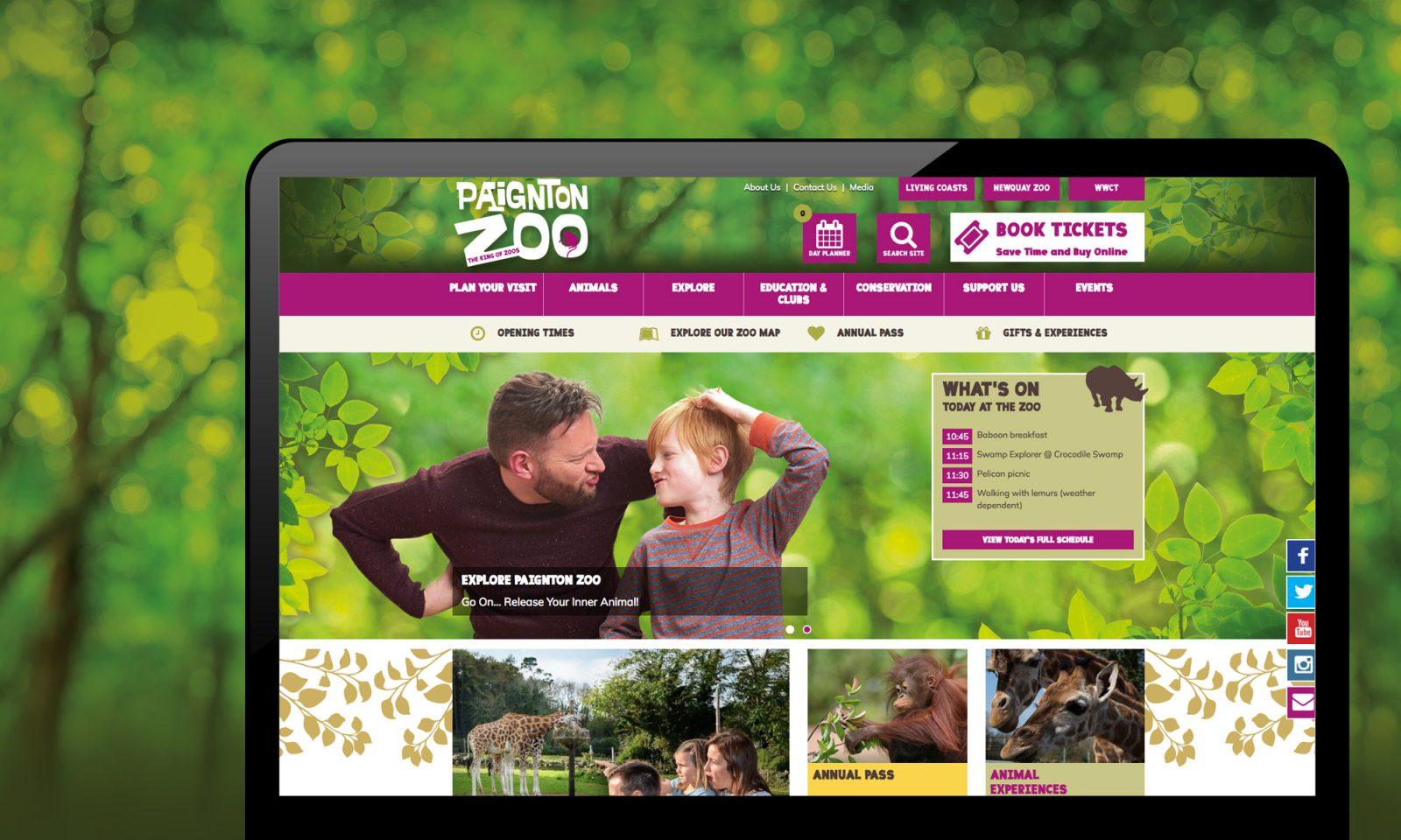 Paignton Zoo Website Design